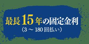 最長15年の固定金額(3~180回払い)
